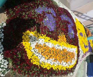photo:お花で描いてみました♪♪