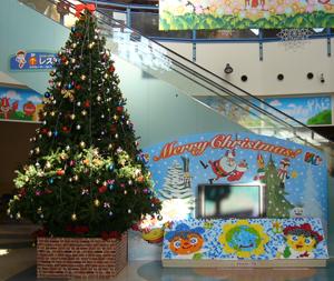 photo:クリスマスツリーが登場☆