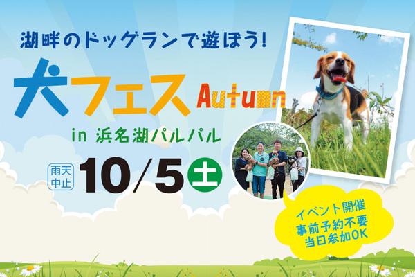 犬フェスautumn in浜名湖パルパル