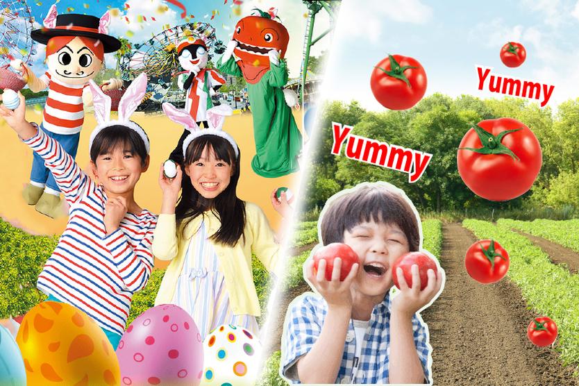 ≪イースター&トマト≫春のグルメをご紹介♪